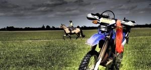 HorseEndurance